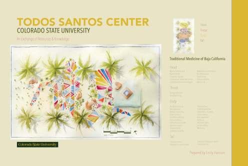 Todos Santos Center_Page_2
